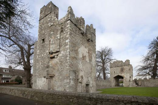 Monkstown Castle, Co Dublin 2