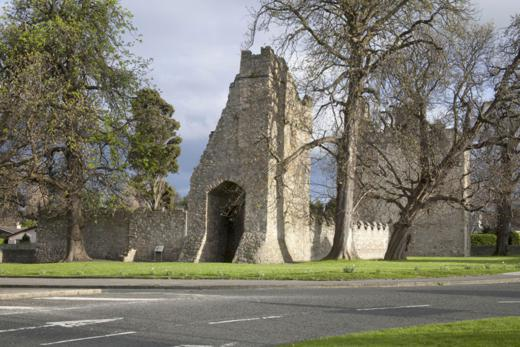 Monkstown Castle, Co. Dublin