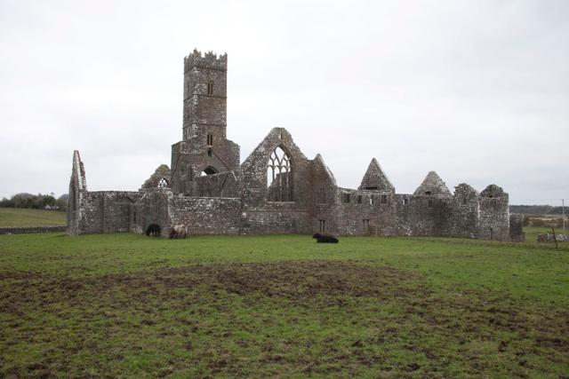 Kilconnell Friary, Galway